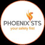 Phoenix STS Logo